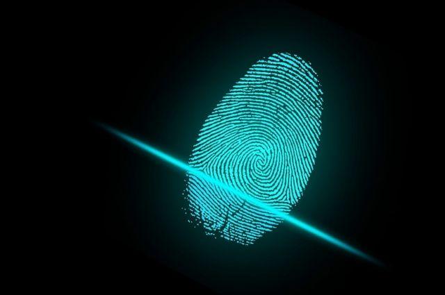 Подозреваемых нашли по отпечаткам пальцев.