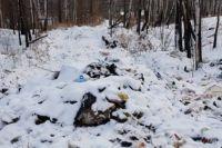 Отходы частично находятся на неразграниченных землях, частично на полосе отвода дороги.