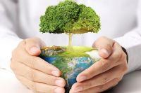 Природа оживает. Как карантин влияет на экологию