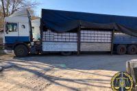 В Харькове изъяли около 25 тысяч бутылок контрафактного алкоголя