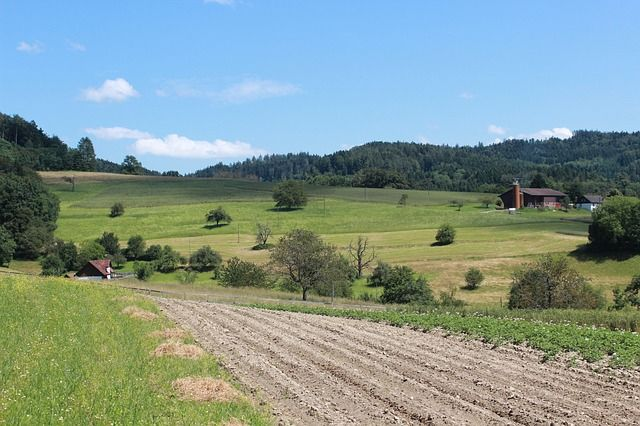 Сельскохозяйственные предприятия Тюменской области работают в новом режиме