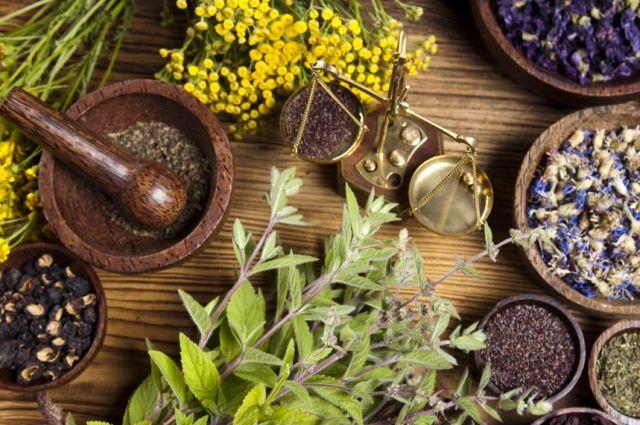 Растительная жизнь: что нужно знать о лечении травами