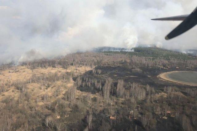 В Зоне ЧАЭС с помощью авиации тушат лесной пожар