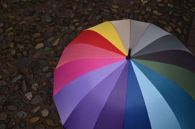 В Оренбуржье циклон принесет дожди, мокрый снег и ветер.