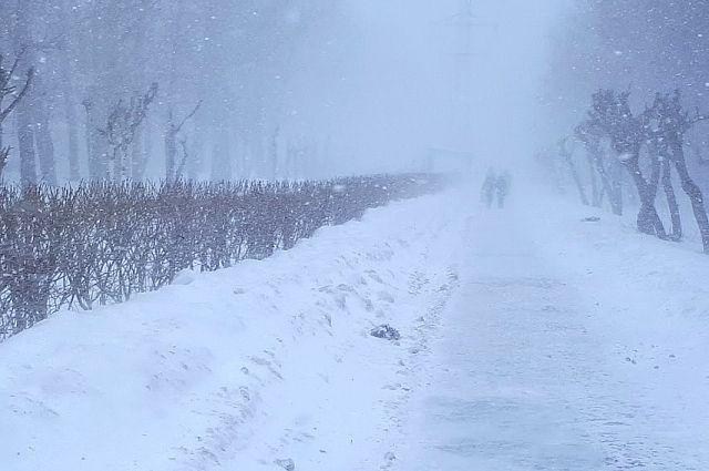В Тюменской области прогнозируют штормовой ветер со снегом