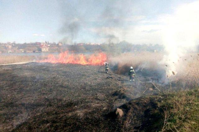 Количество пожаров в экосистемах Украины увеличилось на четверть