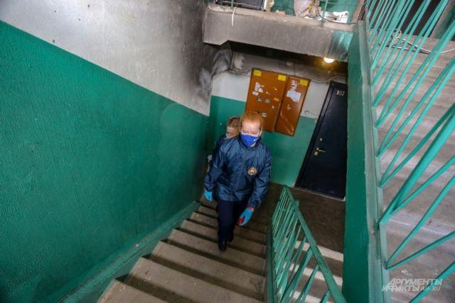 Оренбуржцам объяснили, как отличить волонтеров от мошенников.