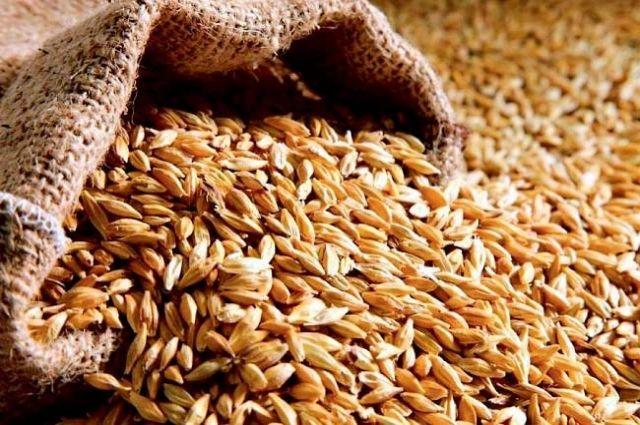 Украина существенно снизила экспорт пшеницы