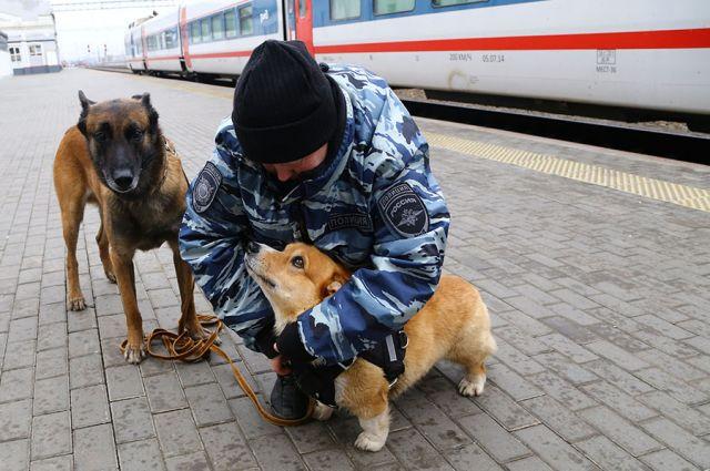Все полицейские готовы к работе в экстренной ситуации