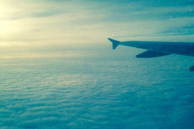 Экипаж самолета Тюмень – Москва подал сигнал тревоги