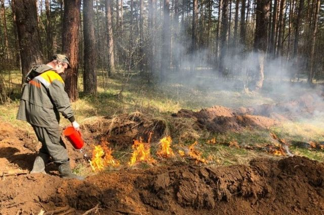 На сегодняшний день в регионе установлен первый класс пожарной опасности.