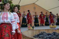 Число желающих выращивать и перерабатывать виноград на Ставрополье растёт