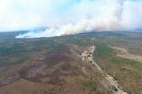 В Украине зафиксировано 33 крупных лесных пожара. Фото иллюстративное.