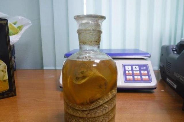 Тюменская таможня задержала северянку со змеей в бутылке