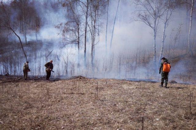 С 10 апреля в южных, центральных и западных районах Иркутской области действует особый противопожарный режим.