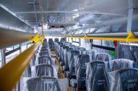 По федеральному проекту «Чистый город» в Новокузнецк поступят 85 автобусов, 15 троллейбусов и 15 трамваев.