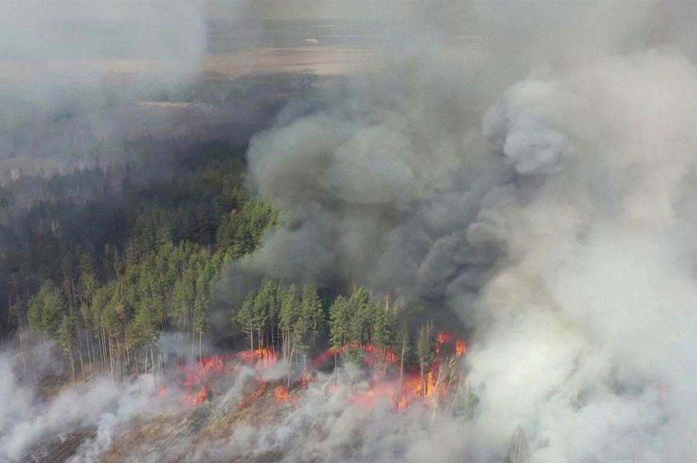 Дым от пожаров в зоне отчуждения Чернобыльской АЭС.