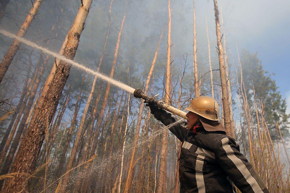 Сотрудник пожарной охраны во время тушения огня, возникшего в районе села Полесское и дошедшего до границы села Раговка.