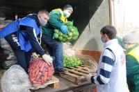 Волонтерский центр партии «Единая Россия» объединяет 600 добровольцев.