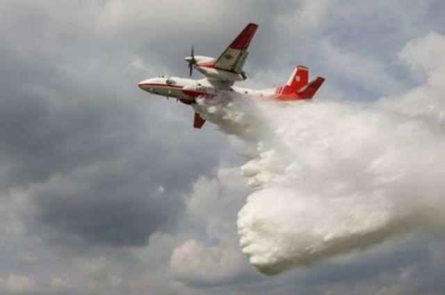 Пожар в зоне ЧАЭС: огня нет, продолжается тление пней и древесины