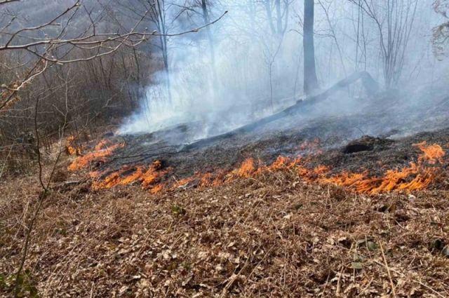 Из-за ветра усилиться пожарная опасность.