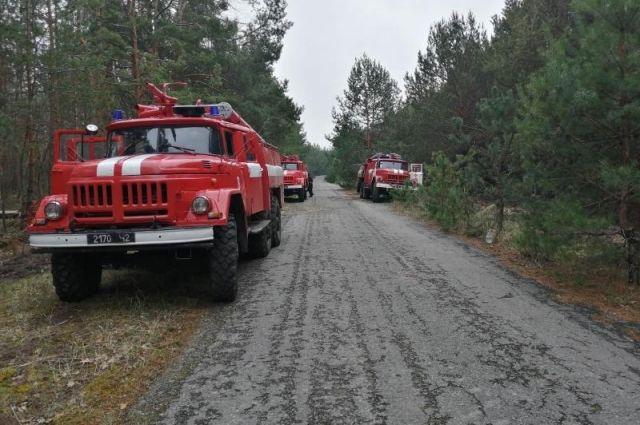 ГСЧС продолжает ликвидировать остатки возгорания в зоне ЧАЭС