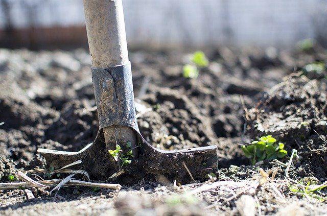 Пока ещё случаются заморозки, самое время подготовить почву к посадке растений.