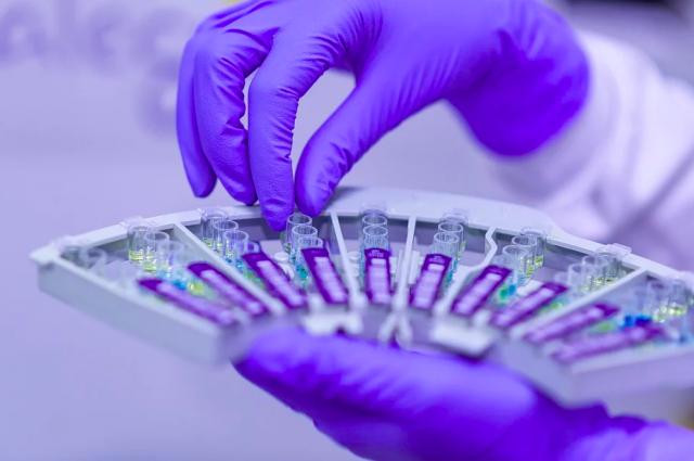 В Оренбурге уже работают лаборатории на базе городской больницы №3, станции переливания крови и в Центре гигиены и эпидемиологии.