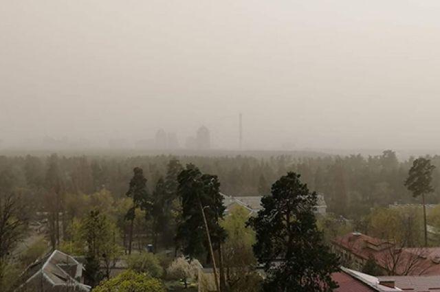 Пылевая буря: какие правила нужно соблюдать при сильном ветре