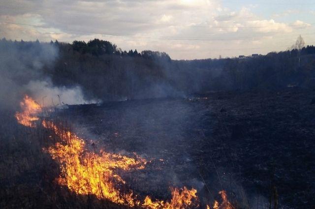 С небольшим травяным пожаром можно попробовать справиться самому, если он же стал масштабным, нужно вызвать пожарных. Главное - не оставаться безучастным.