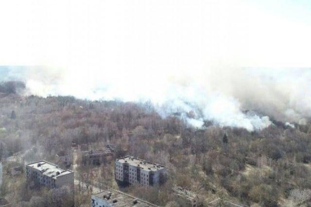 Полиция вручила подозрение еще одному поджигателю в зоне ЧАЭС