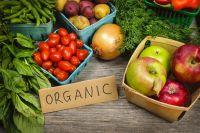 Органический мусор: пять причин не выбрасывать отходы из фруктов и овощей