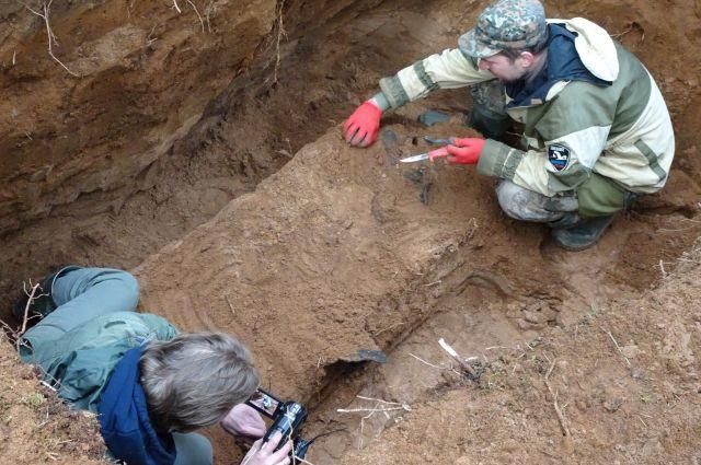Место захоронения Петра Еремеева  поисковики обнаружили в лесу Осташковского района. Этот пилот впервые в истории советской авиации ночью взял на таран нацистский бомбардировщик.