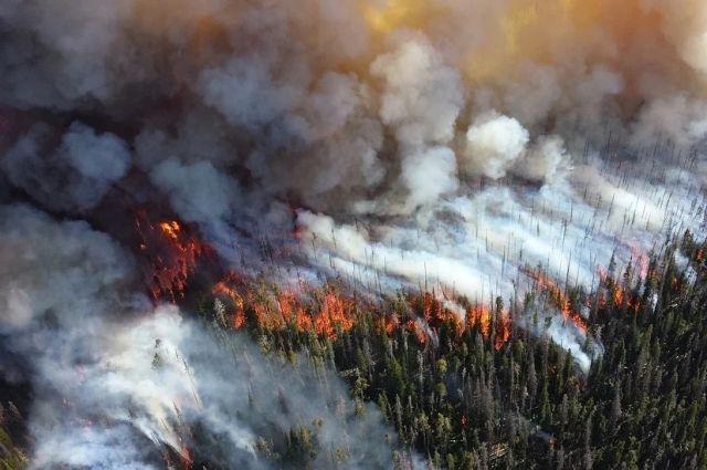 Всего 20 апреля тушили восемь возгораний.