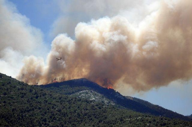 Общая площадь охваченная огнём – 380,5 га, из них 172,5 га покрыта лесом.