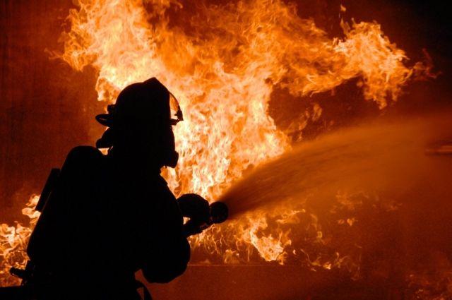 В Черкасской области во время движения загорелся грузовик