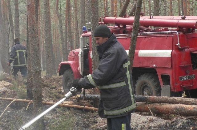 В Житомирской области ГСЧС локализировала очаги двух пожаров