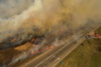 Пылали села и деревья. Как накажут виновных в лесных пожарах