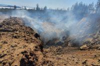 Огонь от мусора мог перейти в лес.