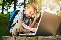 Минпросвещения: Цифровая образовательная среда не заменит обычные уроки