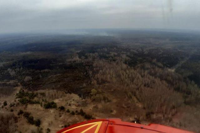 В зоне ЧАЭС спасатели тушат три очага пожаров