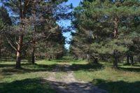 Алтайский край уже потерял в турпотоке 280-300 тысяч человек