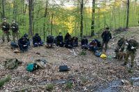В Закарпатской области пограничники со стрельбой задержали 12 нелегалов