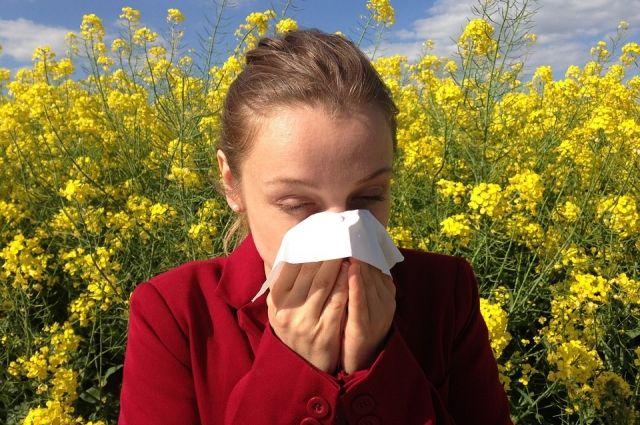 Тюменцам советуют оставаться дома в период сезонной аллергии