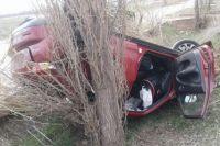 В Сакмарском районе после ДТП в больницу попали водитель и ребенок.