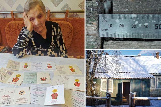 Независимая экспертиза признала условия жизни Александры Ивановой опасными и непригодными для жизни.