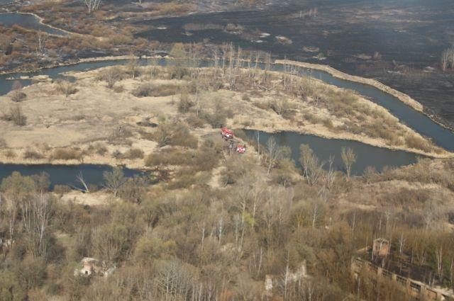 В зоне отчуждения ЧАЭС локализованы все очаги лесных пожаров
