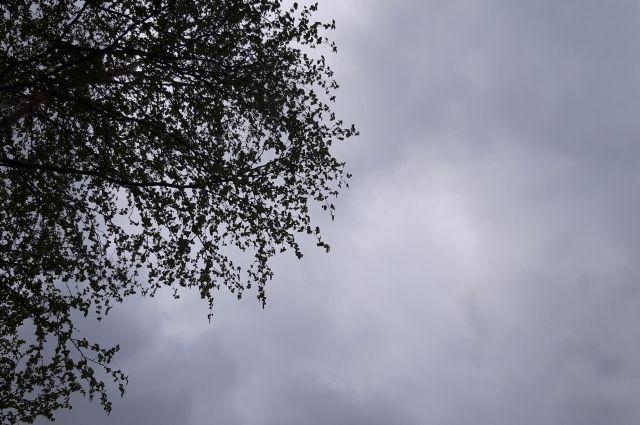 Днем будет порывистый ветер.
