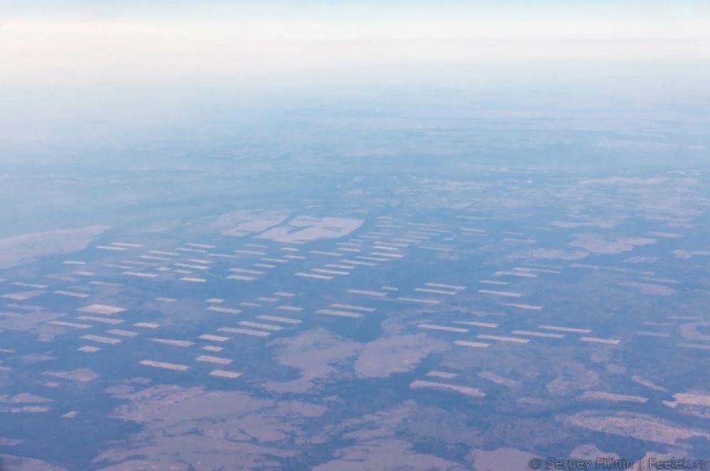 Проплешины вырубленного леса в Большемуртинском районе.
