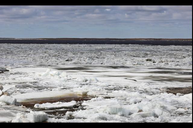 На Ямале в 2020 году ожидают ранний ледоход